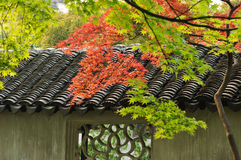 Maple Leaves and Traditional Tiled Roof Royalty Free Stock Photo