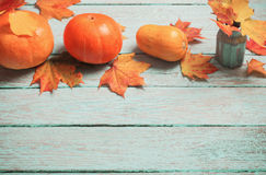 Maple leaves  in vase and pumpkin on blue  background Royalty Free Stock Photos