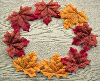 Maple leaves on wood texture background, sign of the autumn in c Stock Photos