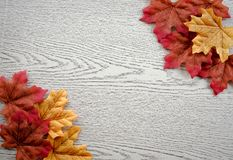 Maple leaves on wood texture. stock photo