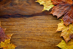 Maple leaves on the wooden background. Autumn maple leaves on the textured wooden background Royalty Free Stock Image