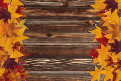 Maple leaves and wooden background Stock Images