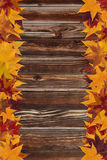 Maple leaves and wooden background Stock Photos