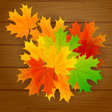 Maple leaves on wooden background Royalty Free Stock Photography