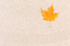 Maple Leaves on Wool Royalty Free Stock Image
