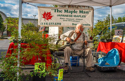 The Maple Man Playing Guitar, Singing and Selling Stock Photos