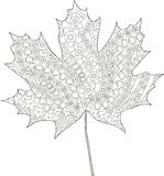 Maple ornaments leaf sketch, thin black line on white, coloring page anti stress Stock Photo