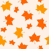 Maple pattern stock illustration