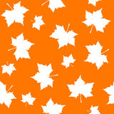 Maple pattern royalty free illustration