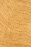 Maple plywood. Close-up on a maple texture wood Stock Photos