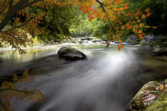 Maple River Stock Photography