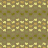 Maple Seamless Brown Royalty Free Stock Image