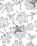 Maple seamless pattern Royalty Free Stock Photo