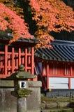 Maple in Shrine Stock Photos
