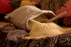 Maple Sugar. A burlap bag of delicious natural maple sugar in a maple forest setting Royalty Free Stock Photo