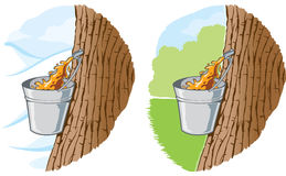 Maple syrup vector illustration