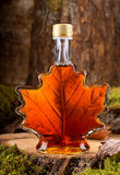Maple Syrup. A bottle of delicious maple syrup in hardwood forest setting Royalty Free Stock Photography