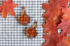 Maple syrup in a bottle in a shape of maple leaf. Red maple leaf background. Maple syrup stock photos