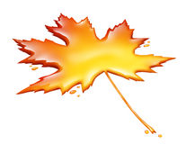 Maple Syrup Leaf Royalty Free Stock Image