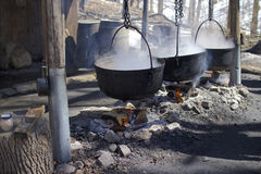 Maple syrup making from tree's sup. Traditional maple syrup making process by boiling tree's sup in huge pots, during maple syrup festival in Ontario, Canada Royalty Free Stock Photo
