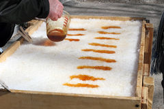 Maple Taffy. Pouring Hot Maple Syrup Onto Snow To Make Maple Taffy (Toffee) A Sweet Treat On A Popsicle Stick Royalty Free Stock Photos