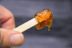 Maple taffy on a stick Stock Photo