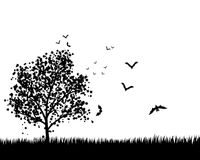 Maple Tree With Bats. Lonely  maple tree in the meadow with flying bats. EPS 8 Vector illustration. All objects are separated Royalty Free Stock Images