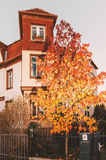 Maple tree in front of luxury French house. Beautiful luxury house at dusk with red maple tree in front and calm neighborhood royalty free stock images