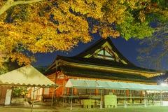 Maple tree and the historical Yasaka Shrine Stock Image