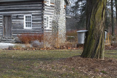 Maple tree with sap buckets and log cabin Royalty Free Stock Images