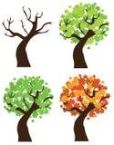 Maple trees Royalty Free Stock Photo