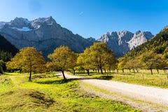 Maple trees at Ahornboden, Karwendel mountains, Tyrol, Austria. Autumn view of the maple trees at Ahornboden, Karwendel mountains, Tyrol, Austria stock photo