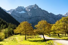 Maple trees at Ahornboden, Karwendel mountains, Tyrol, Austria. Autumn view of the maple trees at Ahornboden, Karwendel mountains, Tyrol, Austria stock photos