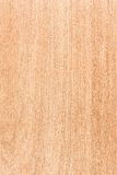 Maple wood texture Stock Photography