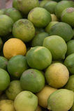 'mapo' ist eine hybride Zitrusfrucht zwischen Tangerine und Pampelmuse Lizenzfreie Stockfotos