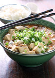 Mapo tofu. Braised bean curd with spicy Chinese meat sauce Stock Images