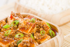 Mapo Tofu. Tofu and minced pork cooked with chili bean paste, fermented black beans, chili oil and Szechuan peppers, garnished with spring onions. Served with Stock Photo