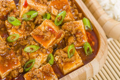 Mapo Tofu. Tofu and minced pork cooked with chili bean paste, fermented black beans, chili oil and Szechuan peppers, garnished with spring onions. Served with Royalty Free Stock Images