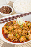 Mapo Tofu. Tofu and minced pork cooked with chili bean paste, fermented black beans, chili oil and Szechuan peppers, garnished with spring onions. Served with Stock Photography