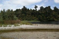 Mapourika Westland do lago foto de stock royalty free