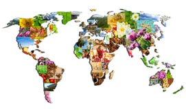 Mappa del mondo delle molte fotografie Immagini Stock