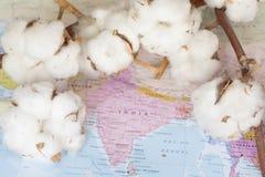 Mappa dell'India con i fiori bianchi del cotone Immagini Stock Libere da Diritti