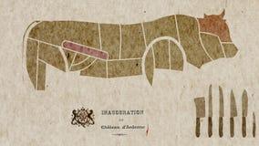 Mappa di anatomia delle parti del corpo della mucca per gli scopi di cucina archivi video