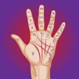 Mappa di chiromanzia sulla palma aperta Fotografia Stock