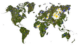 Mappa di mondo con il fondo del prato del fiordaliso Fotografie Stock