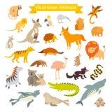 Mappa di mondo degli animali, Australia Illustrazione di vettore Fotografia Stock