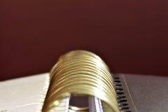 Mappen-Ringe Stockfoto