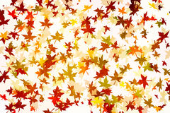 Mapple Leafs Autumn grunge Background Royalty Free Stock Photos