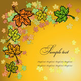 Mapple leaves greetings card Stock Photo