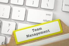 Mappregister med inskriften Team Management 3d Arkivbilder